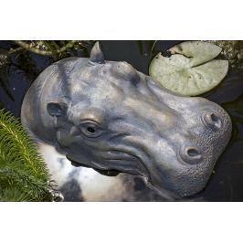 Hroch do jezírka, 29 cm