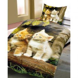 Povlečení Koťata, 135 x 200 cm