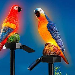 Solární zápich Papoušek Ludvík