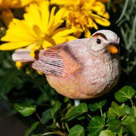 Půdní vlhkoměr Ptáček Birdy