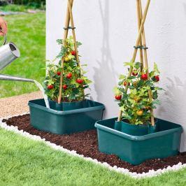 Pomocník pro pěstování rajčat