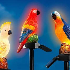 Solární zápich Papoušek Egon